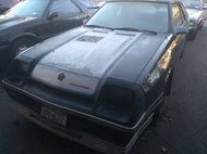 1987 Dodge Charger Shelby Turbo