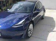 2019 Tesla Model 3 Model 3