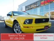 2006 Ford Mustang Delux
