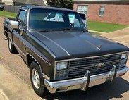1981 Chevrolet C/K 10 Series C10