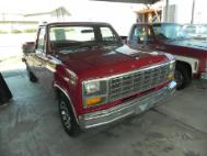 1981 Ford F-100