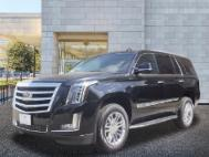 2019 Cadillac Escalade Standard